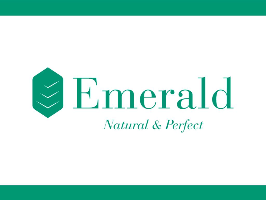 Logo Portfolio – Creme e cosmetici – Presentazione